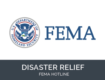 FEMA logo in blue on a white background with a black box underneath that says ``disaster relief``